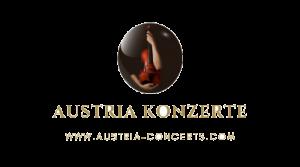 Social Media SEO KMU Wien